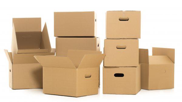 Pensaste que era solo una caja marrón