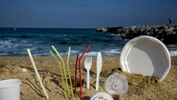Proyecto que prohíbe envases y productos de plásticos de un solo uso avanza en Chile