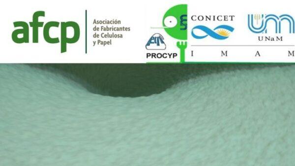Capacitación online sobre Materias primas, procesos de pulpado y blanqueo